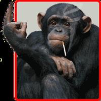 Télécharger Logiciels gratuit pour montage photo drole  Lelogicielgratuit